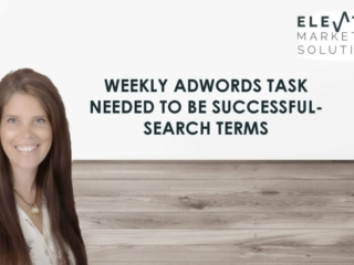 Weekly Adwords task needed to be successful Auditing search terms